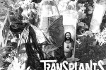 "Baixe o novo single do The Transplants: ""Come Around"""
